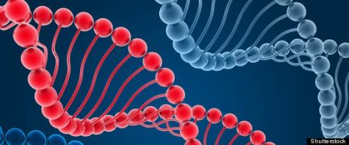 r-human-genome-large570.jpg